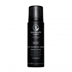Paul Mitchell Awapuhi Dry Shampoo Foam 70 ml