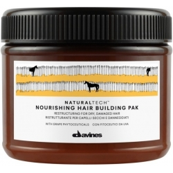 Davines Natural Tech Nourishing Hair Building Pak 250ml