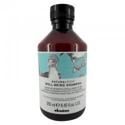 Davines Natural Tech Well Being Shampoo 250ml