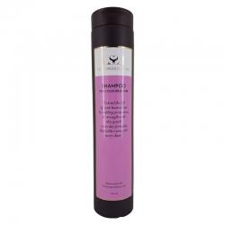 Lernberger Stafsing Coloured Hair Shampoo 250ml