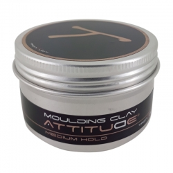 TronTveit Attitude Moulding Clay 100ml