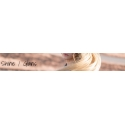 Shine / glans