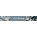 Saltvandsspray
